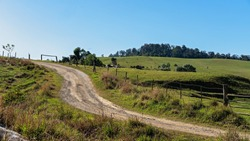 A dirt road leading beside the fenced paddocks of an Australian dairy farm in Eungella national park