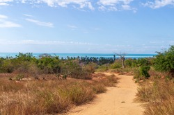 A dirt sandy road brings to the seaside of the Indian Ocean in Baixo do Pinda in Mozambique. Unspoiled vegetation surrounds the path.