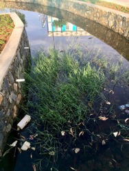A dirty ditch overgrown with grass with a slight reflection of a building and blue sky