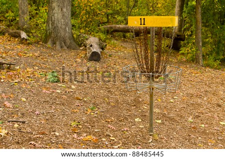 A Disk Golf Chain Catcher in a Wooded Golf Course