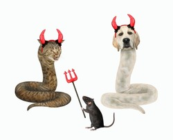 A dog labrador and a beige cat are snakes. They are near a rat with a devil trident for Halloween. White background. Isolated.