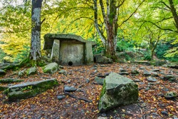 A dolmen in an autumn colored forest. An ancient megalithic burial place in the Caucasus mountains in Russia.