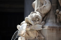 A dolphin water spout on the Fontana del Pantheon (Fountain of the Pantheon) in Rome. In the background can be seen some traditional roman building surrounding the piazza.