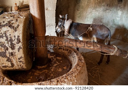 A donkey-powered olive oil press in which the animal drives a heavy stone to crush the oil from olives.