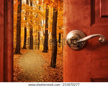 A door is opening into a beautiful forest with autumn leaves and a path trail with sunshine in the sky for an escape or dream concept.