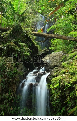 A double waterfall on Cascada Juan Diego in the El Yunque rainforest in the Caribbean National Forest, Puerto Rico