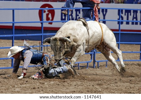 "A downed bull rider at the Greeley Stampede in Colorado (""Worlds Largest 4th of July Rodeo."")"