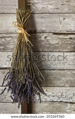 A dried bunch of lavender flowers hanging up on an old textured wooden wall/Dried lavender flowers hanging on a wall in an old barn