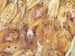 A dried under the sun salty fish gourmet