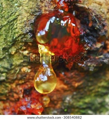 stock-photo-a-drop-of-resin-with-gorgeou