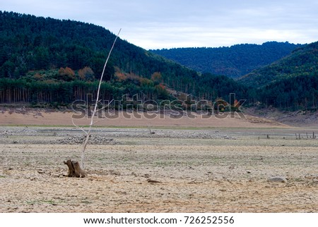 A dry reservoir, beige and green. Reservoir fund