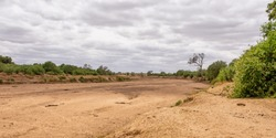 A dry riverbed in Limpopo, South Africa
