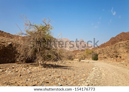 A dry riverbed, Wadi, used as a road in the United Arab Emirates.