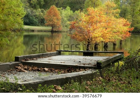 A fall Cypress tree water reflection at a fishing pier, horizontal with selective focus