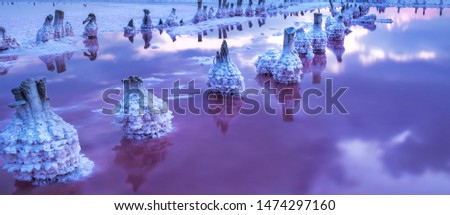 A fantastic picture of a salty pink lake with rows of salt columns in salt crystals after sunset. Long exposure, twilight.
