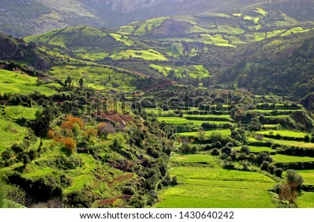A farm in the middle of the Rif Mountains in northern Morocco Stockfoto ©
