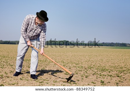 a farmer checks the small plants in a field of agriculture.