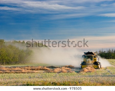 A farmer combines his wheat fields during the harvest. - stock photo