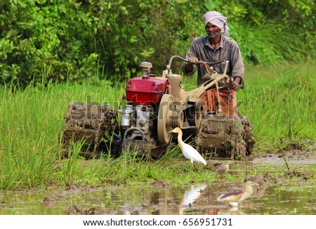 A farmer in Kerala plowing paddy field with tractor triller on 27th May 2017 #656951731