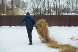 a farmer makes a haystack with a pitchfork on a winter day. Agricultural work. Harvesting hay. The feeding of animals.