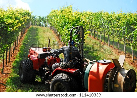 a farmer watering the vineyards with a tractor
