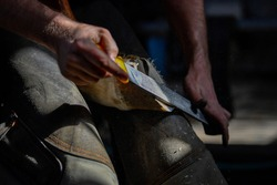 A farrier adjusting a horseshoe