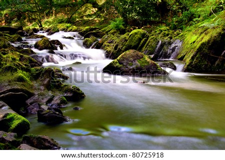a fast flowing stream with moss on rocks
