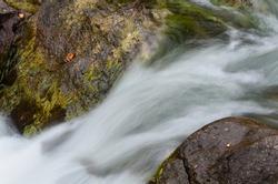 A fast moving brook along a roadside in New Brunswick, Canada in autumn