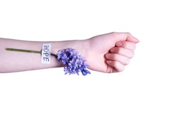 a female hand and a flower is glued on her wrist on a white background
