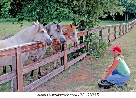 A female rancher gets ready to feed her three horses