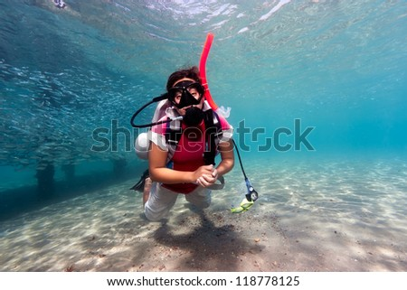 A female SCUBA diver in shallow water next to a jetty surrounded by tropical fish