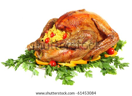 A festive or thanksgiving turkey on a bed of italian flat-leaf parsley, garnished with slices of orange and cherry tomatoes and stuffed with rice