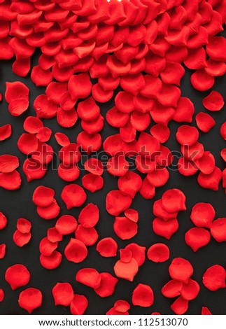 A few red rose petals isolated on black