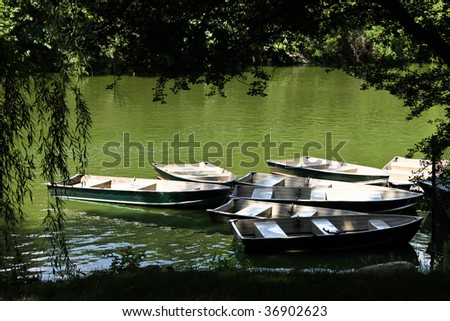 a few rowing boats moored by a tree in a park in the sunshine