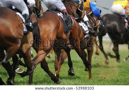 A field of horses and jockeys during a race. #53988103