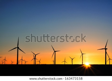 A field of wind turbines at sunset