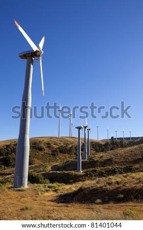 A field of wind turbines in California.