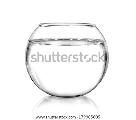 Shutterstock a fish bowl, isolated on white