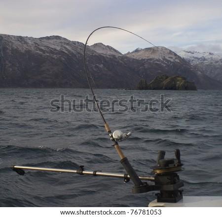 a fish on the line off Kodiak Island