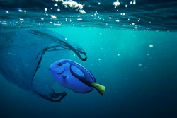 A fish with a plastic bag. Pollution in oceans concept.