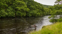 A fisherman spey casting for salmon using a fly rod on the River Orchy, Argyll, Scotland