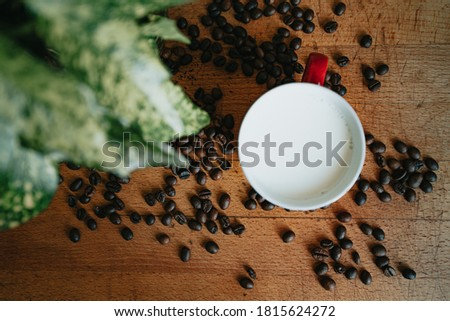 A flat lay of a cup of milk surrounded by coffee grains and green leaves Photo stock ©
