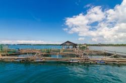 A Floating Fish pen with a small cottage off the coast of Tubigon, Bohol, Philippines. An enclosure filled with Tilapia or Bangus. Cage and Pen fish farming industry.