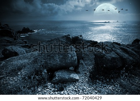 A flock of birds flying over the ocean at fullmoon