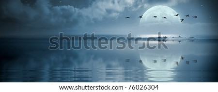 A flock of birds flying over the ocean at fullmoon - stock photo