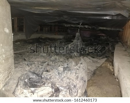 Photo of  A flooded and sub pumped crawlspace vapor barrior dirty job