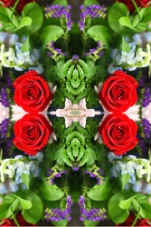 a floral bouquet arrangement abstract of classic red roses and soft pink daisies and blue larkspur and statice 8005