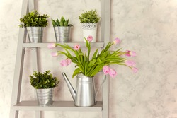 A flower arrangement of pink tulips in a metal watering can, green plants in metal pots, standing on a gray counter against a beige wall.