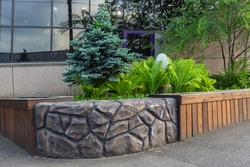 A flower bed with conifers and other perennial plants. Landscaping.