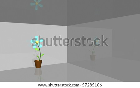 A flower in a room